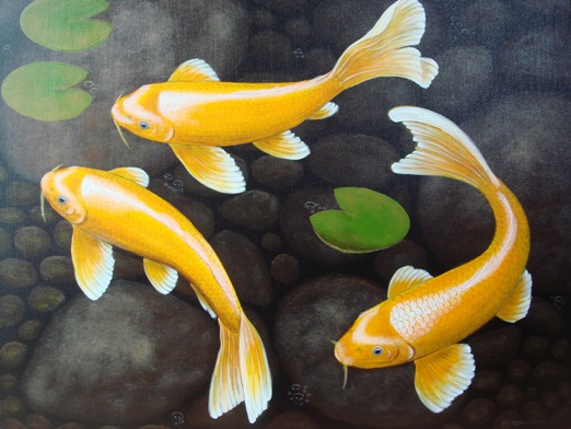 Apply feng shui cubicle tips don 39 t get frustrated for Koi fish representation